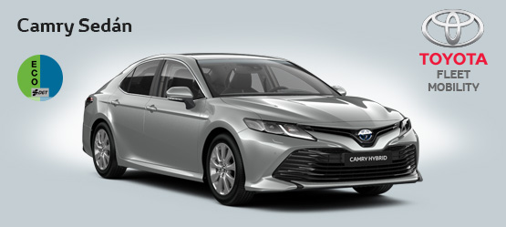 "<strong>Toyota Camry 220H Business por <span style=""color: #e50000; font-size: 2.4rem;line-height: 2.4rem;"">420€</span> al mes</strong>"